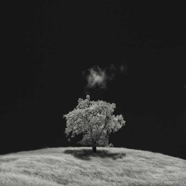 Nathan Wirth 650x650 Infrared Silence by Nathan Wirth