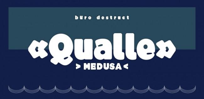 bd qualle1 650x317 BD Qualle