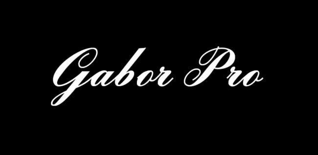 gabor1 650x317 Gabor Pro
