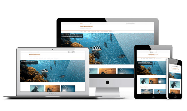 profesional 10 Free Fresh WordPress Themes for August 2014