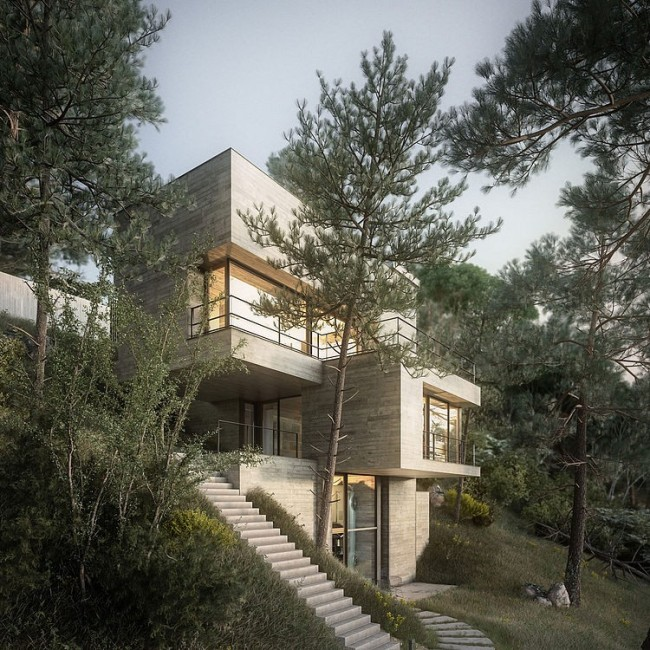 001 house nature design raum 650x650 House in Nature by Design Raum