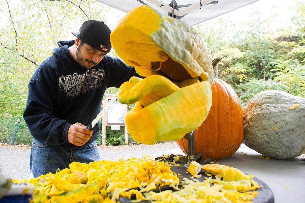 1177 Epic Pumpkin T Rex