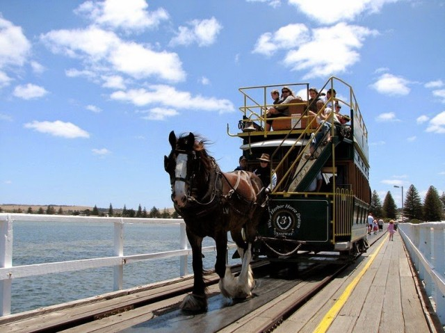 1401723665 1 640x479 Victor Harbor Horse Drawn Tram in Australia