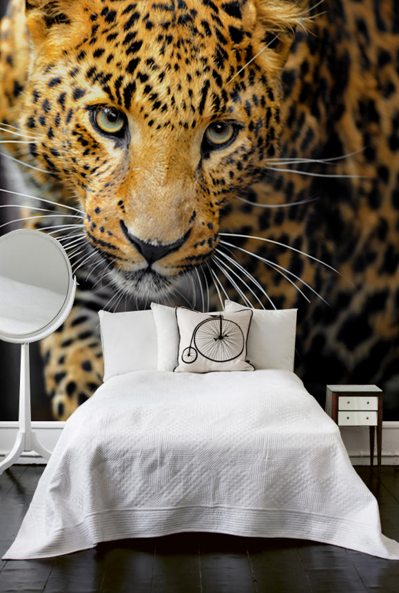 44pixers 45427420bez Animal themed wall décor products by PIXERS