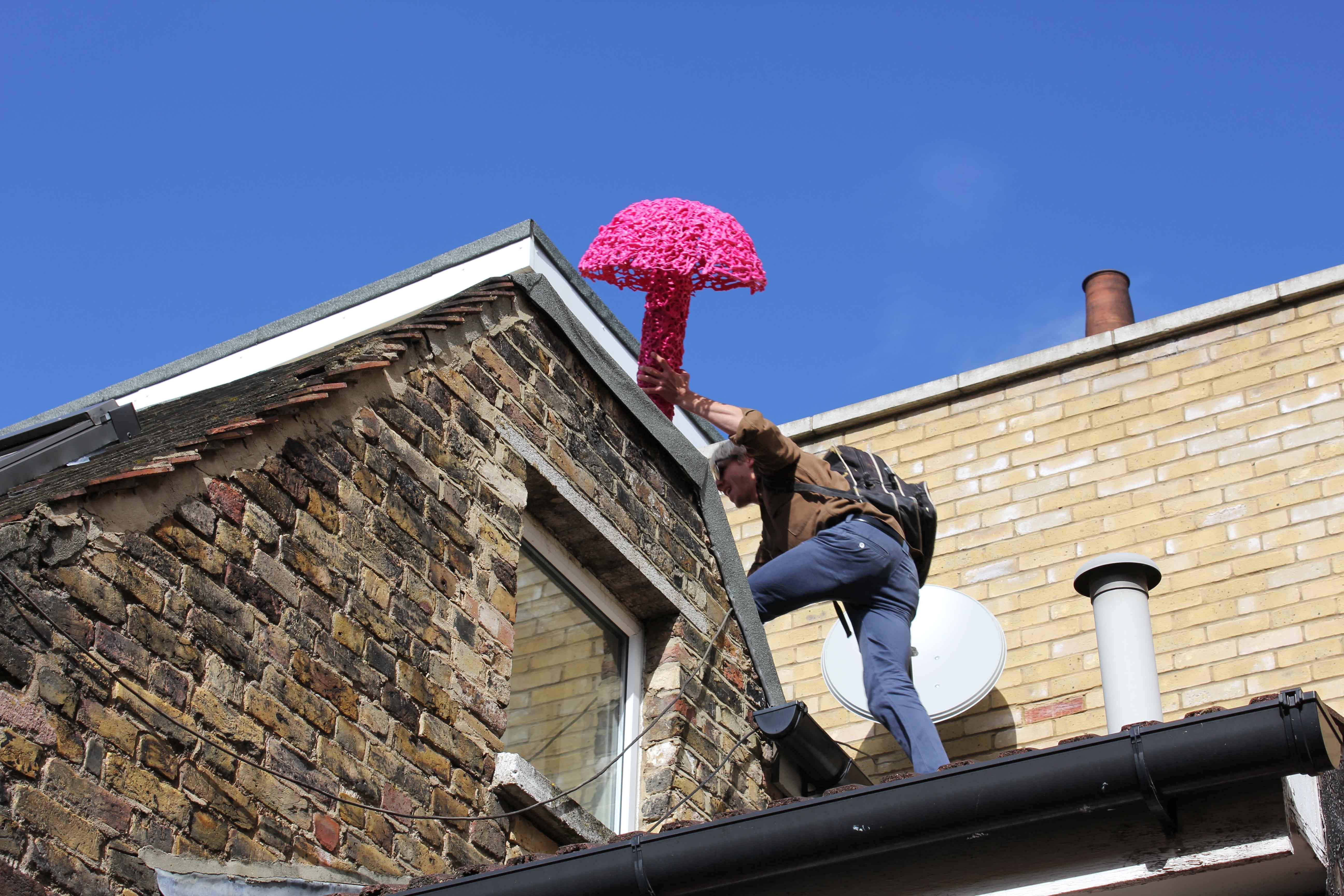 Climbing roof The Mega Mushroom
