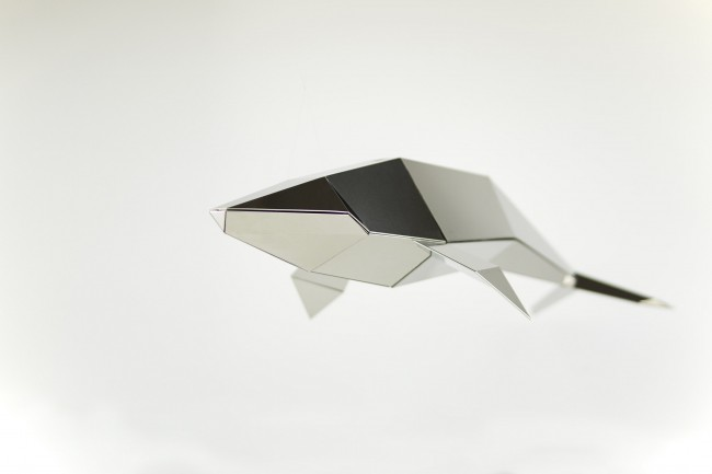 1 Whale 650x433 Poligon