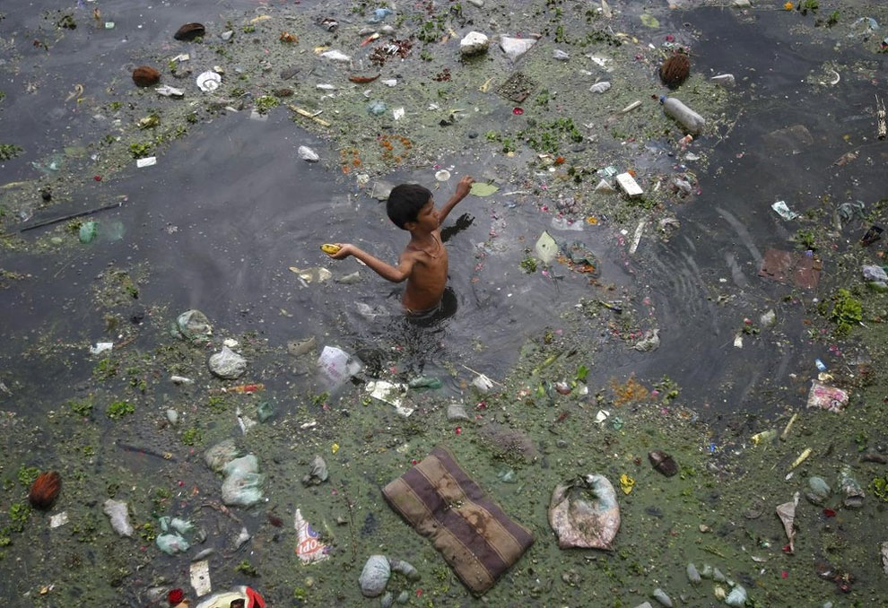 1135 Polluted Rivers in India