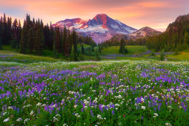 1356442093 1 640x426 Landscape Photography by Kevin McNeal