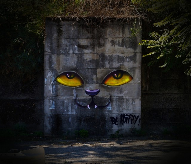 1359196090 2 640x548 Situational Street Art by DMS