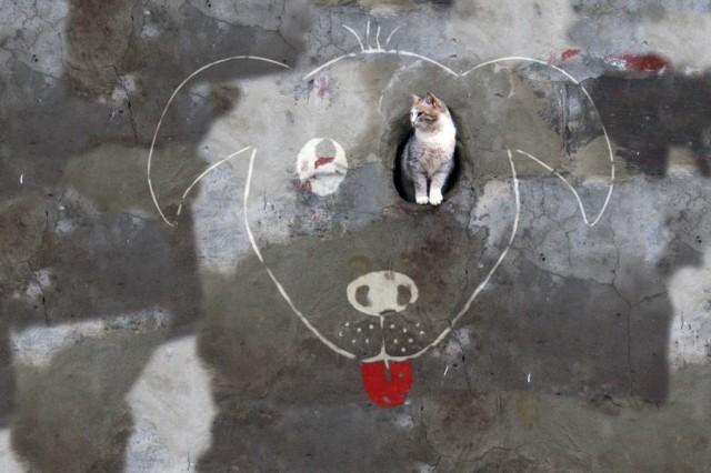 1363428668 1 640x426 Funny Street Art by Alexey Menshikov
