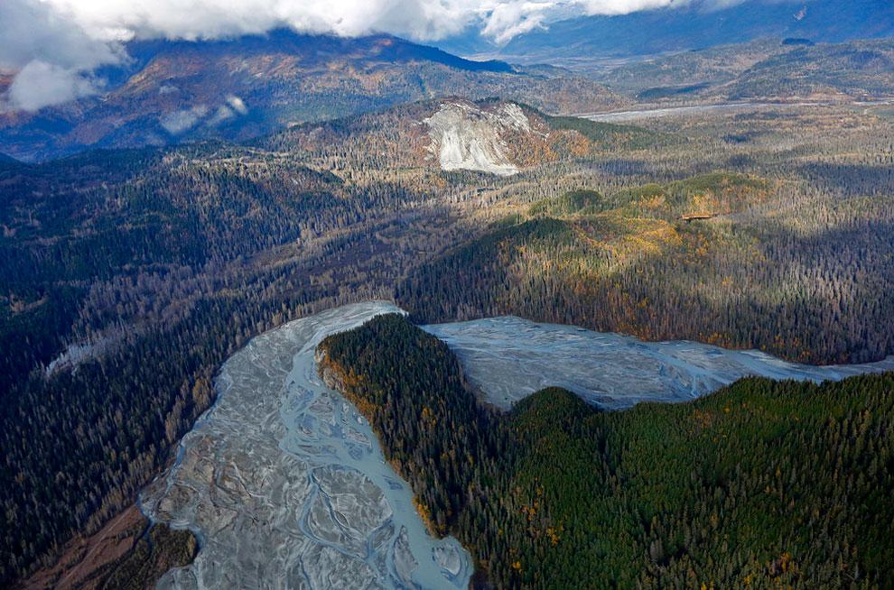 1407 Beautiful Wildlife of the Yukon