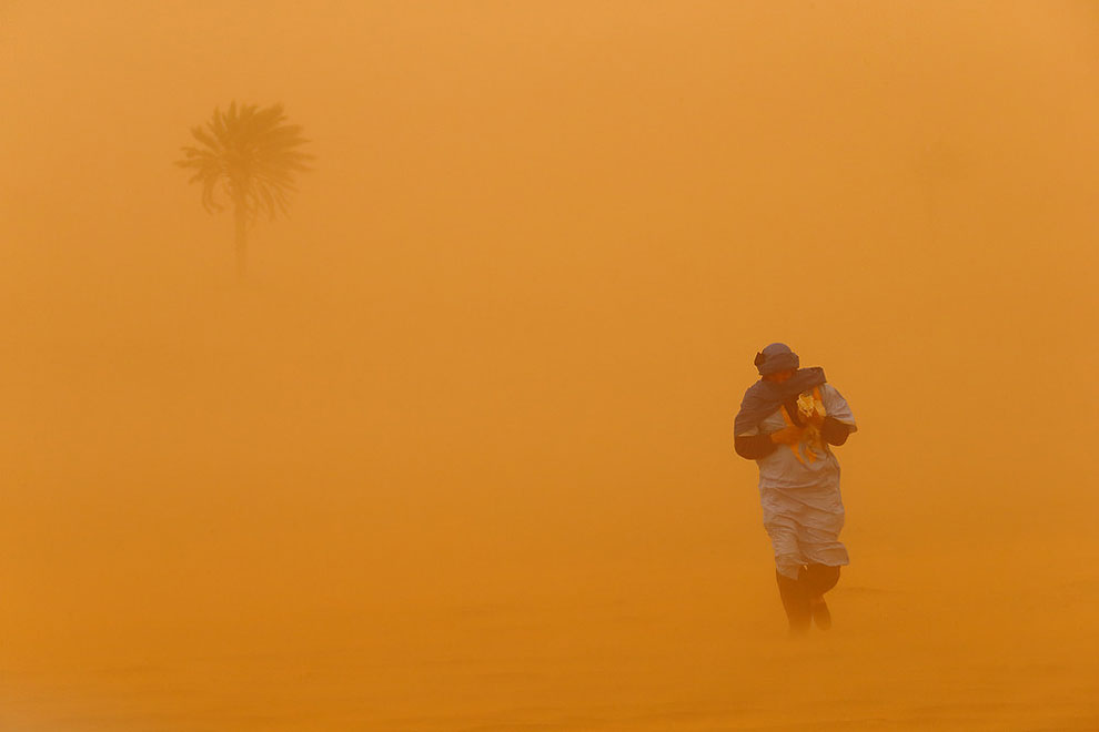 190 2014 National Geographic Photo Contest, Week 5