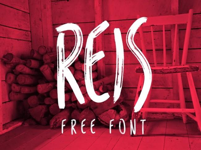 reis free font 01 650x487 Reis Free Typeface