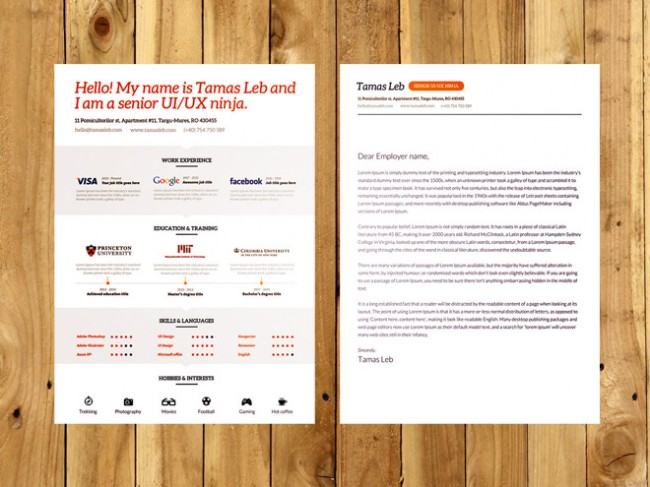 resume 650x487 Free Professional Resume CV Template