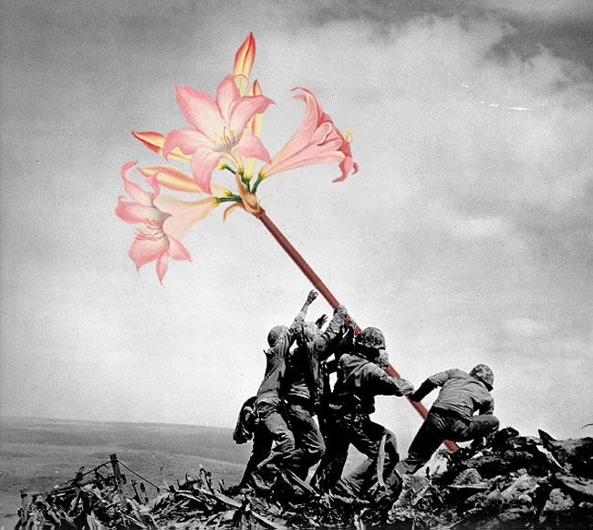 1168 Artist Replaces Weapons With Flowers In Historic Pictures