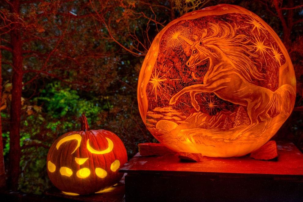 Unicorn Pumpkin Carving 94 Amazing Pumpkin Carvings