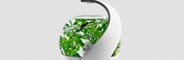 Avo-Self-Cleaning-Fish-Tank-1