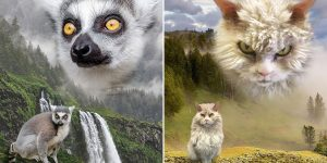"""""""Wild Masterpieces"""": These Glamour Shots Of Animals Are Beautiful!"""