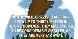 Fun Animal Facts You May Never Knew Existed Or Cared About