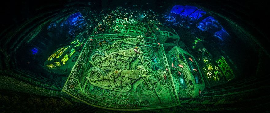 these winning photos of the 2018 underwater photographer of the year contest will take your. Black Bedroom Furniture Sets. Home Design Ideas