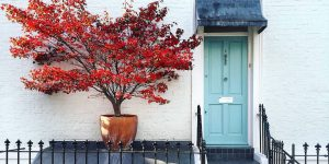 This Instagram Account Shares Amazing Photos Of The Doors Of London