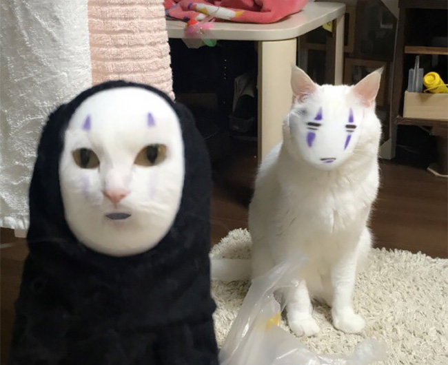 This Is What Happens When You Face Swap A Cat With Spirited Away S No Face
