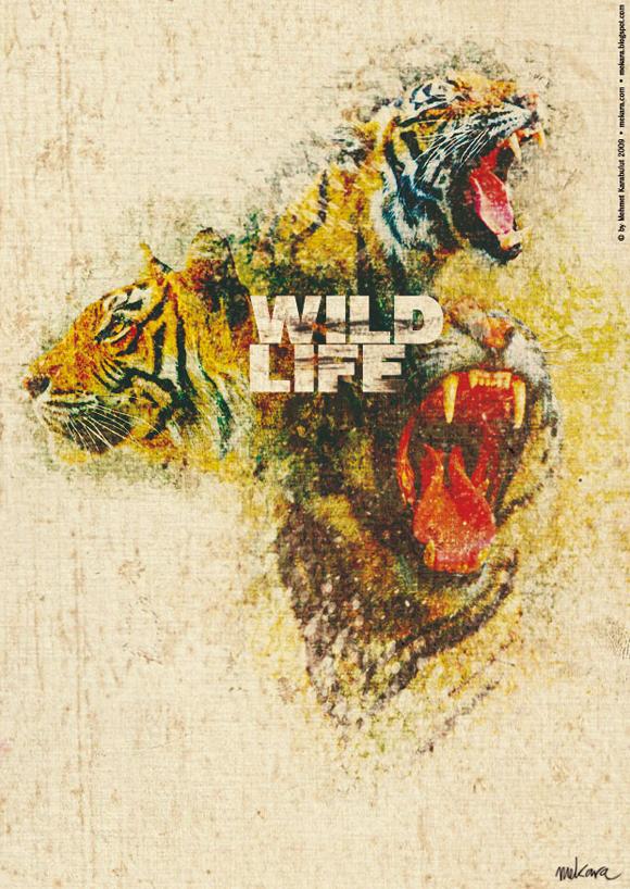 wildlifedyt mekara v.2