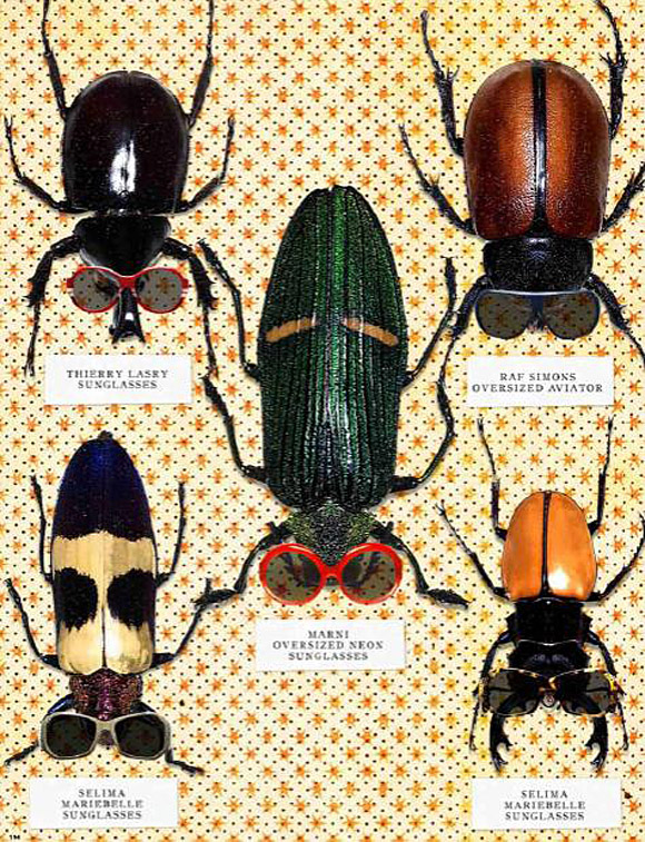 Haute Couture Bugs
