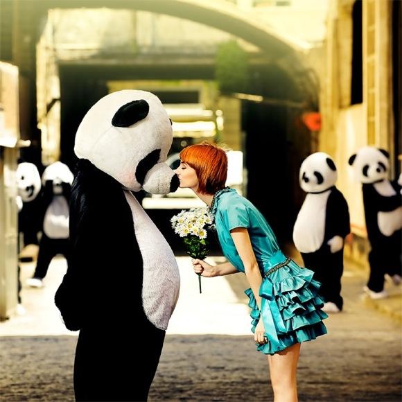 PandasPursuitofLoveIbaiAcevedo A Pandas Pursuit of Love   Ibai Acevedo