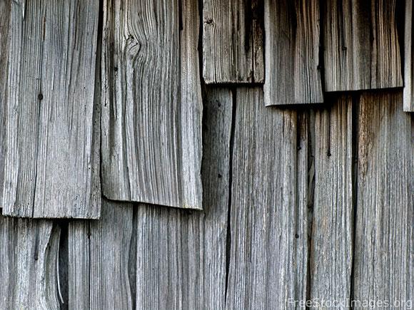 royaltyfreestockimagewoods Royalty Free Wood Textures for Web Designers