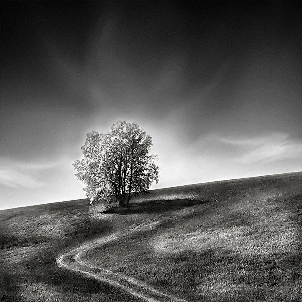 AndreuPardales2 Black and White Landscape Photography by Andreu Pardales