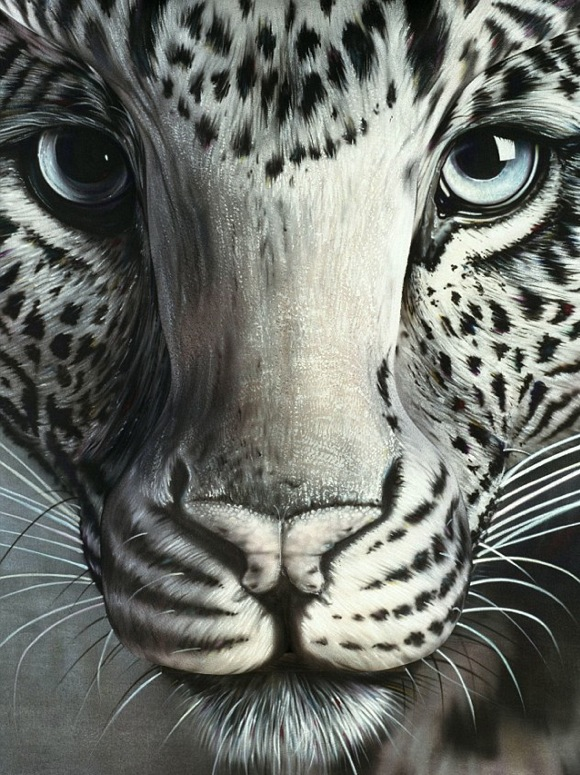HyperRealisticBodyPaintings Hyper Realistic Body Paintings   Craig Tracy